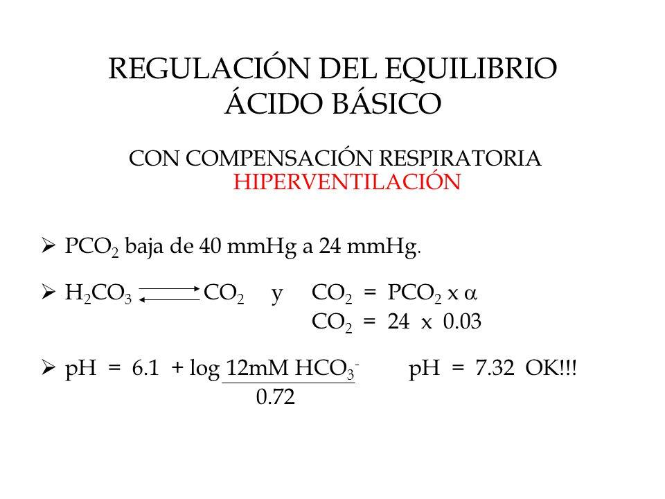 REGULACIÓN DEL EQUILIBRIO ÁCIDO BÁSICO CON COMPENSACIÓN RESPIRATORIA HIPERVENTILACIÓN  PCO 2 baja de 40 mmHg a 24 mmHg.