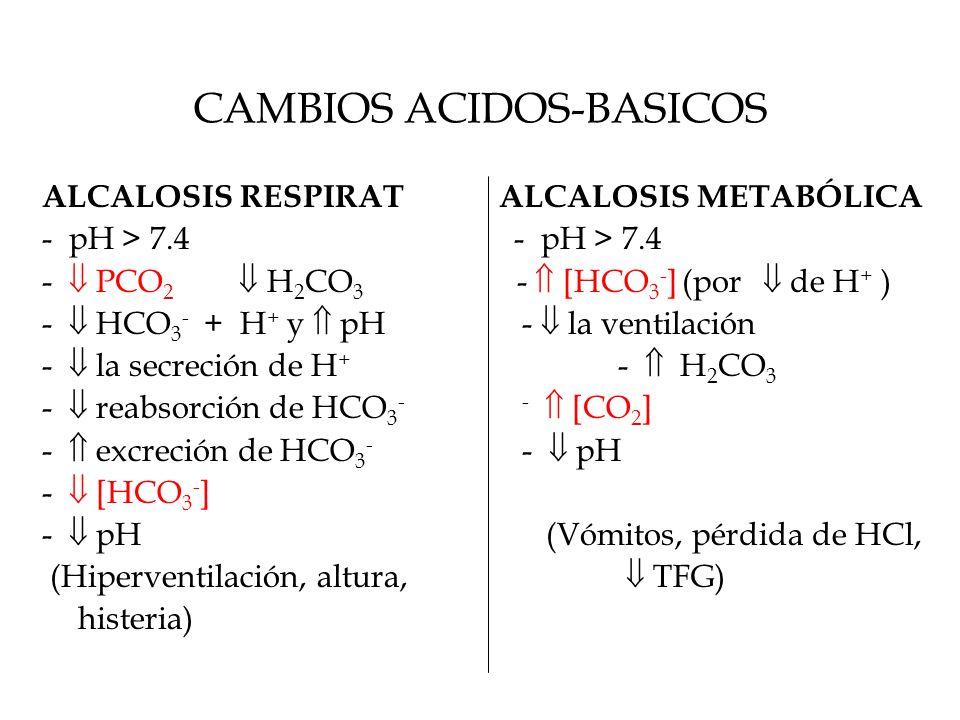 CAMBIOS ACIDOS-BASICOS ALCALOSIS RESPIRAT ALCALOSIS METABÓLICA - pH > 7.4 -  PCO 2  H 2 CO 3 -  [HCO 3 - ] (por  de H + ) -  HCO 3 - + H + y  pH-  la ventilación -  la secreción de H + -  H 2 CO 3 -  reabsorción de HCO 3 --  [CO 2 ] -  excreción de HCO 3 - -  pH -  [HCO 3 - ] -  pH (Vómitos, pérdida de HCl, (Hiperventilación, altura,  TFG) histeria)