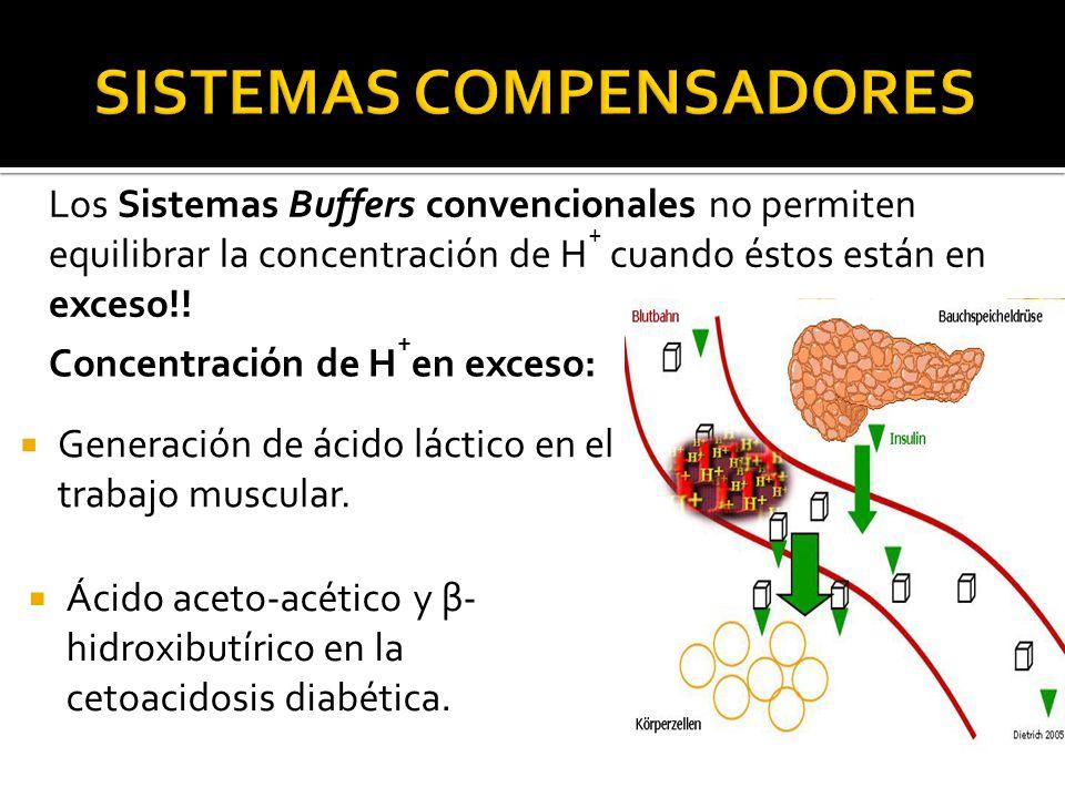Los Sistemas Buffers convencionales no permiten equilibrar la concentración de H + cuando éstos están en exceso!.