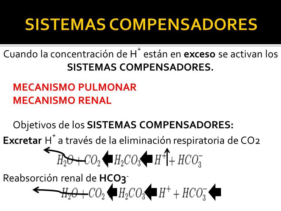 Cuando la concentración de H + están en exceso se activan los SISTEMAS COMPENSADORES.