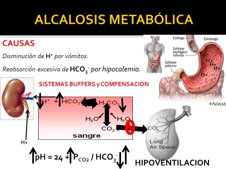 CAUSAS Disminución de H + por vómitos.Reabsorción excesiva de HCO 3 - por hipocalemia.
