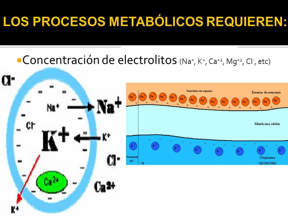  Concentración de electrolitos (Na +, K +, Ca +2, Mg +2, Cl -, etc)