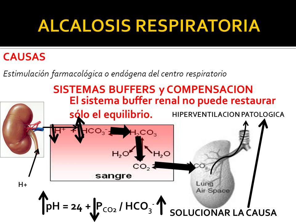 CAUSAS Estimulación farmacológica o endógena del centro respiratorio H+ SISTEMAS BUFFERS y COMPENSACION pH = 24 + P CO2 / HCO 3 - El sistema buffer renal no puede restaurar sólo el equilibrio.