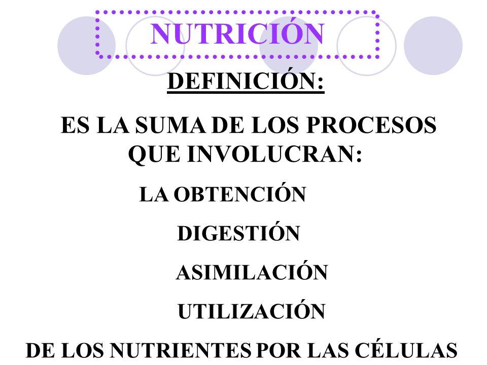 NUTRICIÓN DEFINICIÓN: ES LA SUMA DE LOS PROCESOS QUE INVOLUCRAN: LA OBTENCIÓN DIGESTIÓN ASIMILACIÓN UTILIZACIÓN DE LOS NUTRIENTES POR LAS CÉLULAS