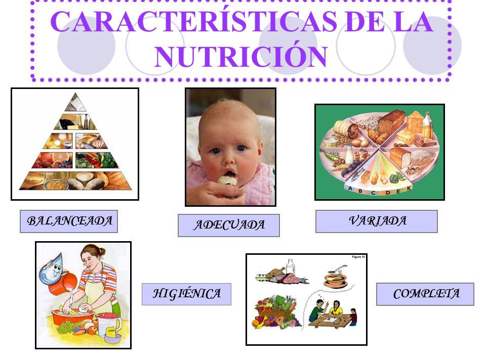 CARACTERÍSTICAS DE LA NUTRICIÓN BALANCEADA ADECUADA VARIADA HIGIÉNICA COMPLETA