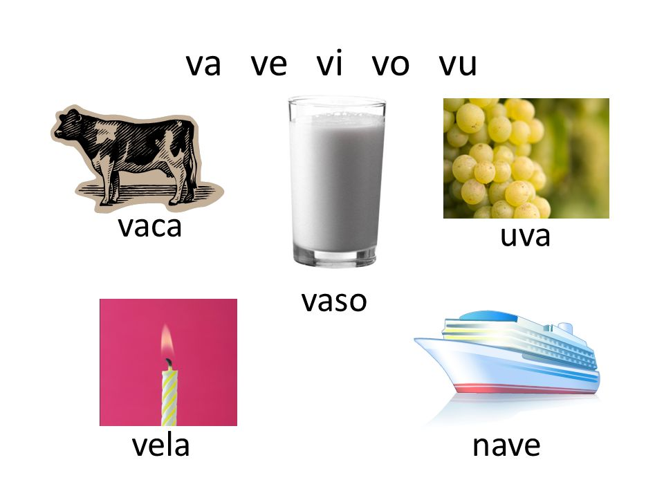 va ve vi vo vu vaca vaso uva velanave