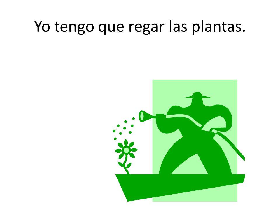 Yo tengo que regar las plantas.