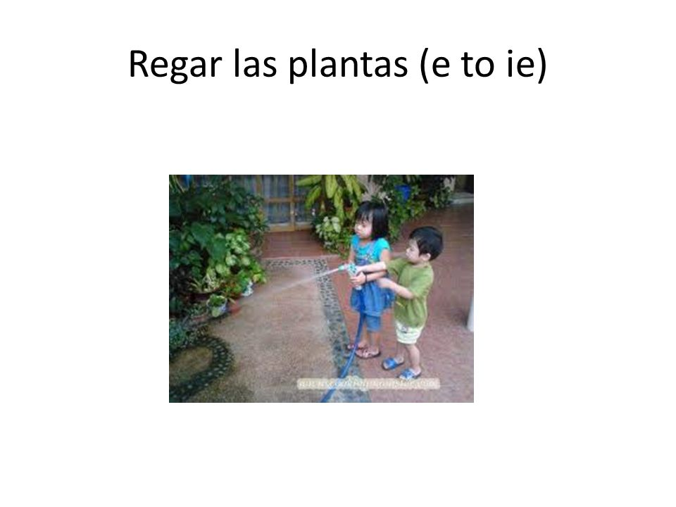 Regar las plantas (e to ie)