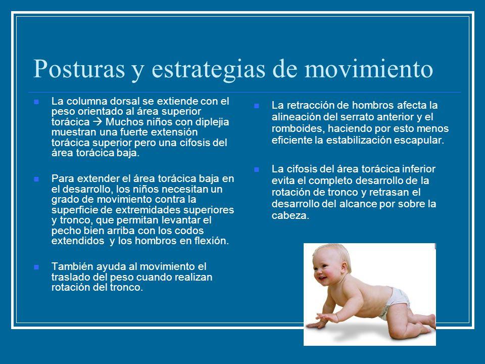 Posturas y estrategias de movimiento La columna dorsal se extiende con el peso orientado al área superior torácica  Muchos niños con diplejia muestra