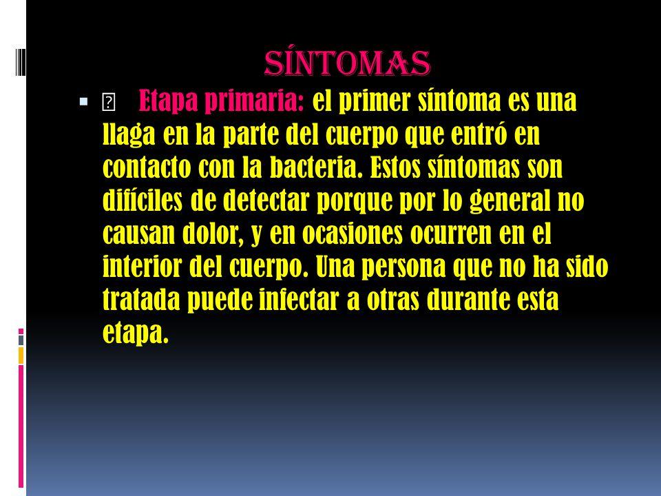 síntomas   Etapa primaria: el primer síntoma es una llaga en la parte del cuerpo que entró en contacto con la bacteria. Estos síntomas son difíciles