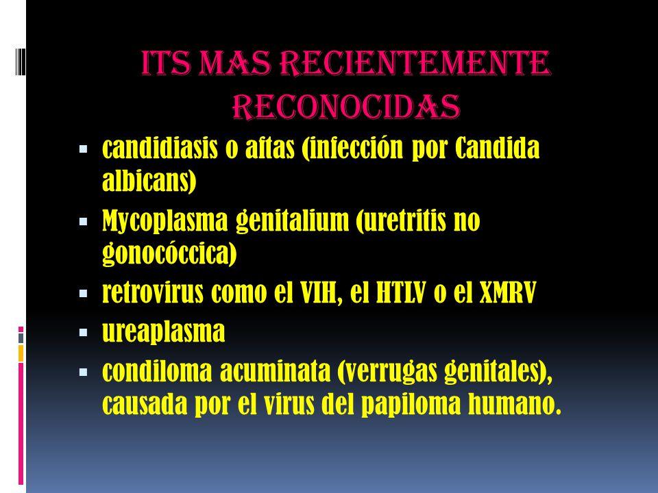 Its mas recientemente reconocidas  candidiasis o aftas (infección por Candida albicans)  Mycoplasma genitalium (uretritis no gonocóccica)  retrovir