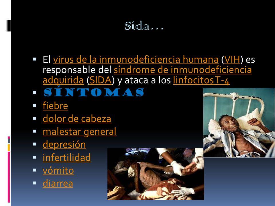 Sida…  El virus de la inmunodeficiencia humana (VIH) es responsable del síndrome de inmunodeficiencia adquirida (SIDA) y ataca a los linfocitos T-4virus de la inmunodeficiencia humanaVIHsíndrome de inmunodeficiencia adquiridaSIDAlinfocitos T-4  Síntomas  fiebre fiebre  dolor de cabeza dolor de cabeza  malestar general malestar general  depresión depresión  infertilidad infertilidad  vómito vómito  diarrea diarrea