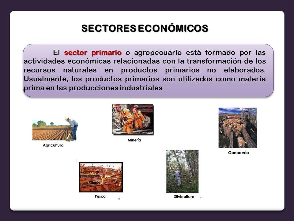 SECTORES ECONÓMICOS sector primario El sector primario o agropecuario está formado por las actividades económicas relacionadas con la transformación de los recursos naturales en productos primarios no elaborados.