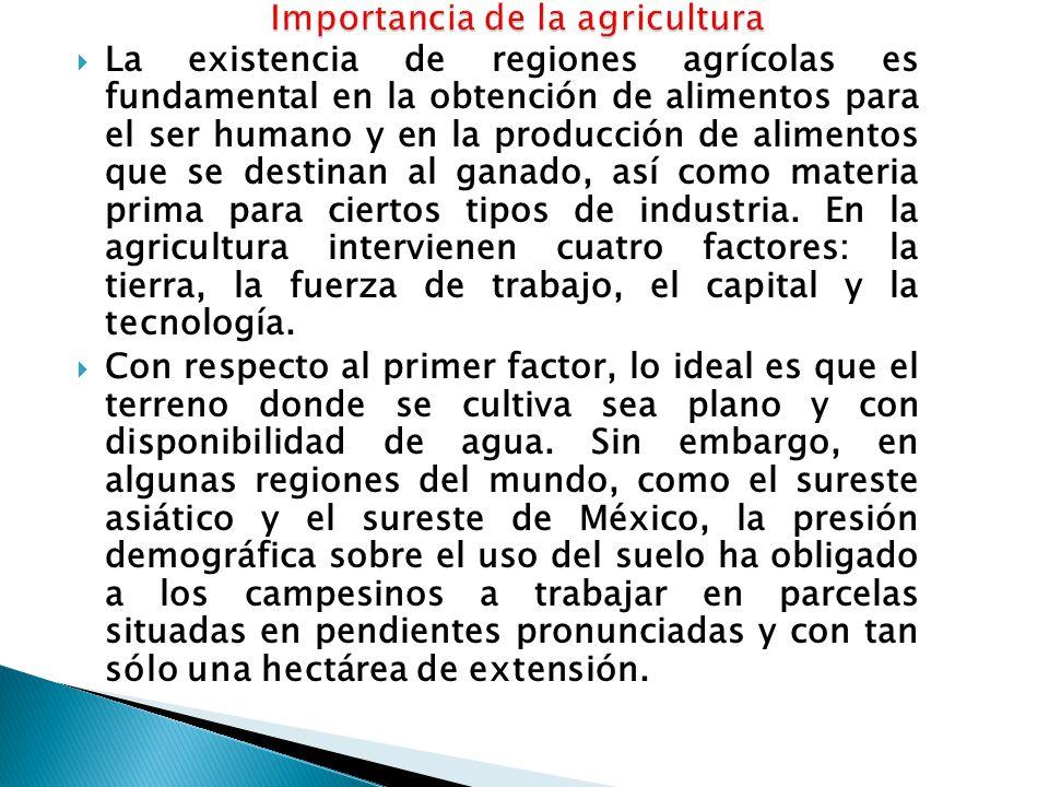  La existencia de regiones agrícolas es fundamental en la obtención de alimentos para el ser humano y en la producción de alimentos que se destinan al ganado, así como materia prima para ciertos tipos de industria.