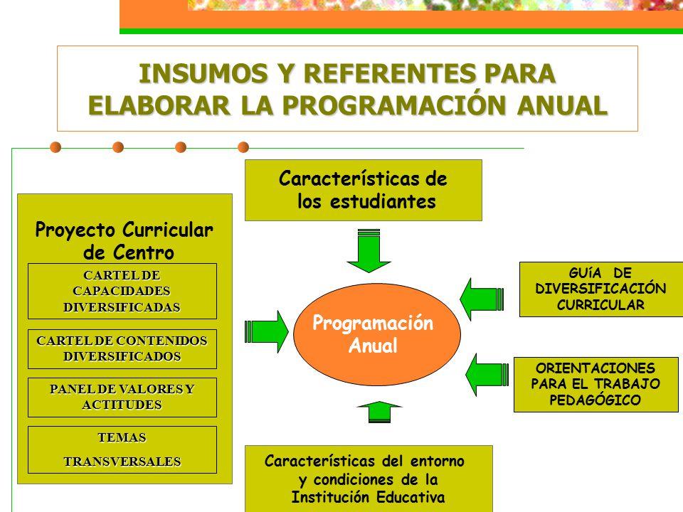 Programación Anual INSUMOS Y REFERENTES PARA ELABORAR LA PROGRAMACIÓN ANUAL Proyecto Curricular de Centro CARTEL DE CAPACIDADES DIVERSIFICADAS CARTEL