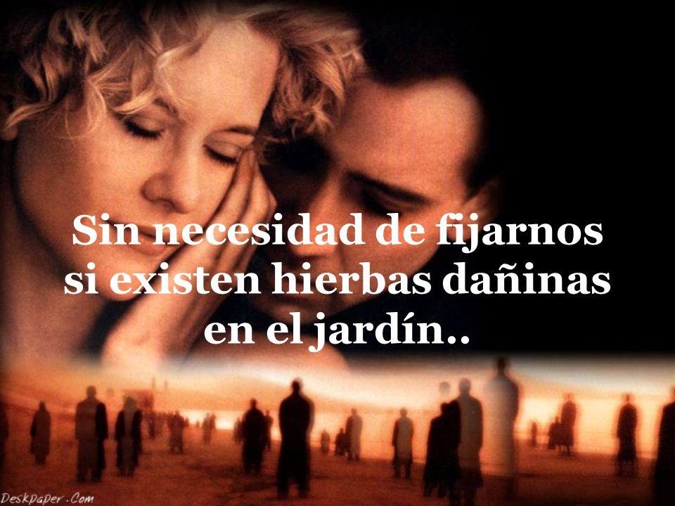 Di: yo te amo , solamente cuando tu amor sea verdadero...