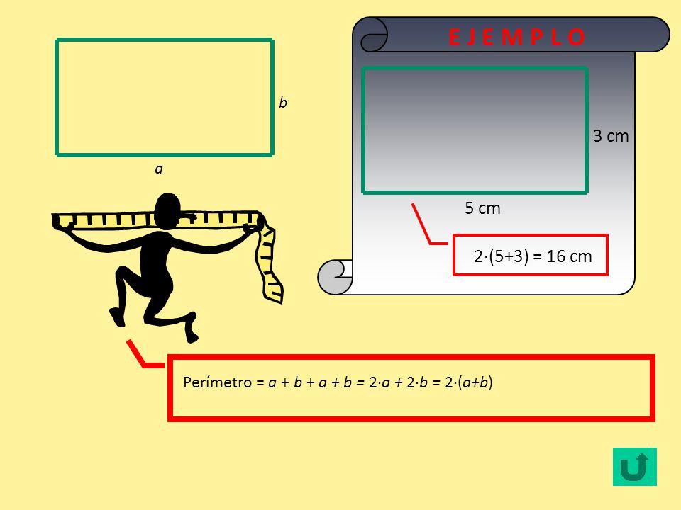 Perímetro = l + l + l + l = 4·l l l 3 cm 4·3 = 12 cm E J E M P L O