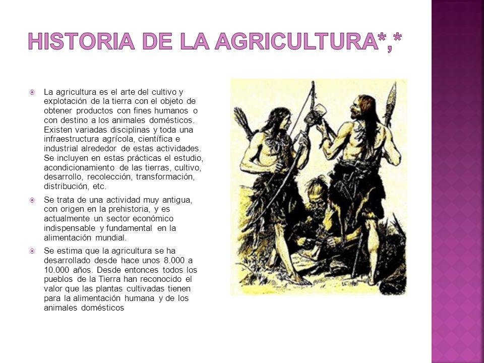  La agricultura es el arte del cultivo y explotación de la tierra con el objeto de obtener productos con fines humanos o con destino a los animales domésticos.