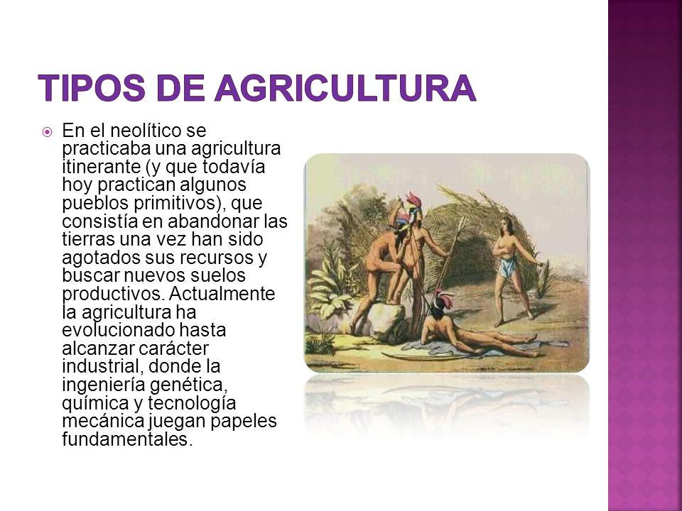  En el neolítico se practicaba una agricultura itinerante (y que todavía hoy practican algunos pueblos primitivos), que consistía en abandonar las tierras una vez han sido agotados sus recursos y buscar nuevos suelos productivos.