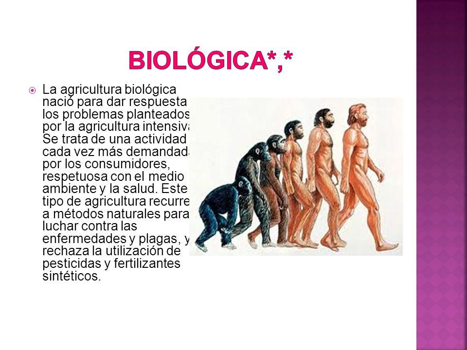  La agricultura biológica nació para dar respuesta a los problemas planteados por la agricultura intensiva.