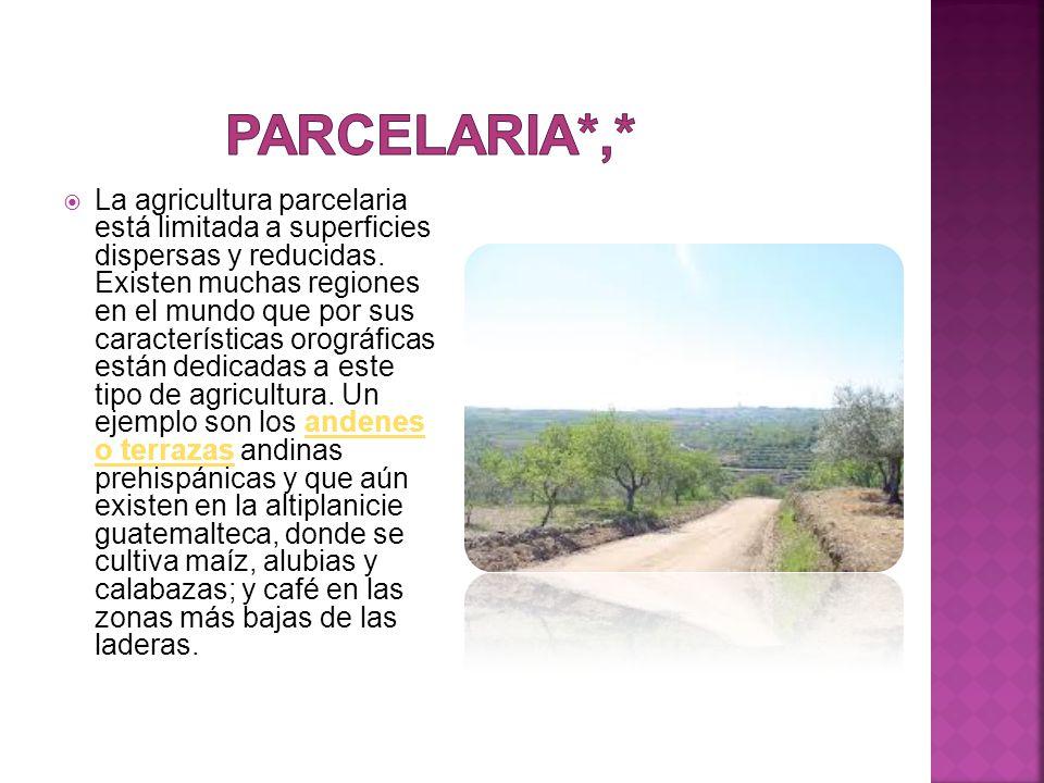  La agricultura parcelaria está limitada a superficies dispersas y reducidas.
