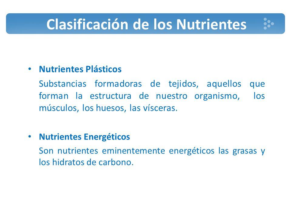 Clasificación de los Nutrientes Nutrientes Reguladores Lo forman aquellas substancias que permitirán a nuestro organismo utilizar correctamente los nutrientes y desarrollar por tanto sus funciones de modo adecuado.