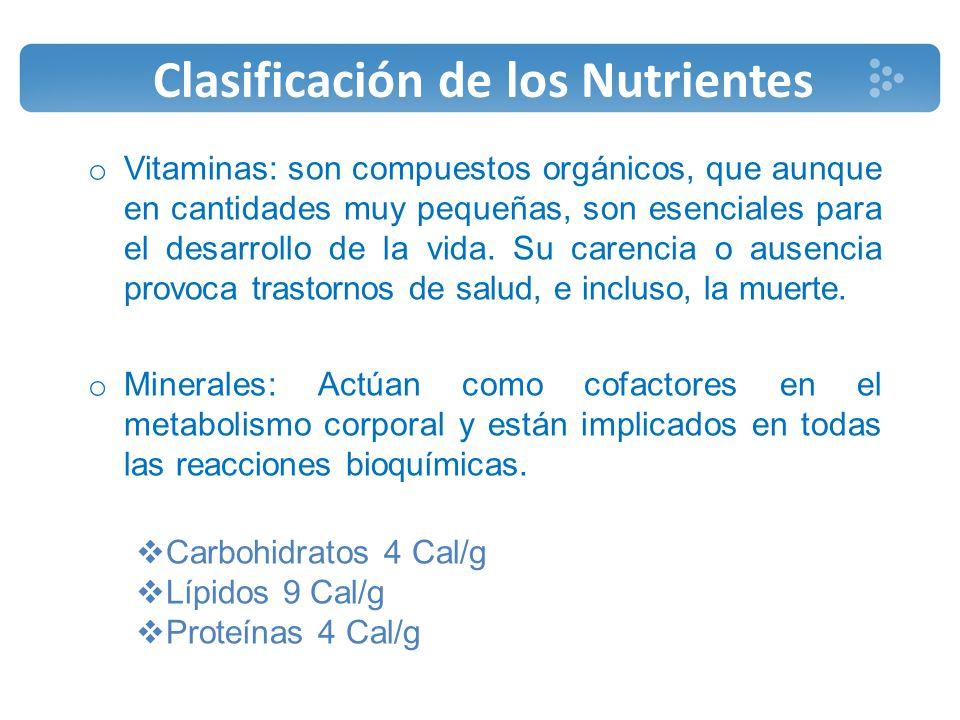 MALNUTRICIÓN El término malnutrición se refiere a las carencias, excesos o desequilibrios en la ingesta de energía, proteínas y/o otros nutrientes.
