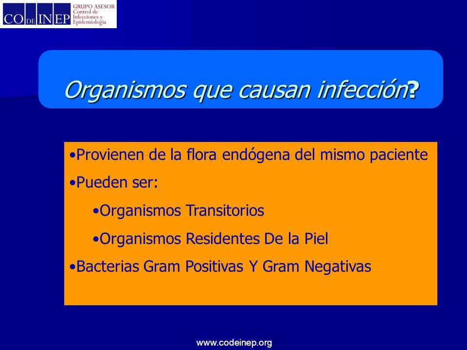 www.codeinep.org Provienen de la flora endógena del mismo paciente Pueden ser: Organismos Transitorios Organismos Residentes De la Piel Bacterias Gram