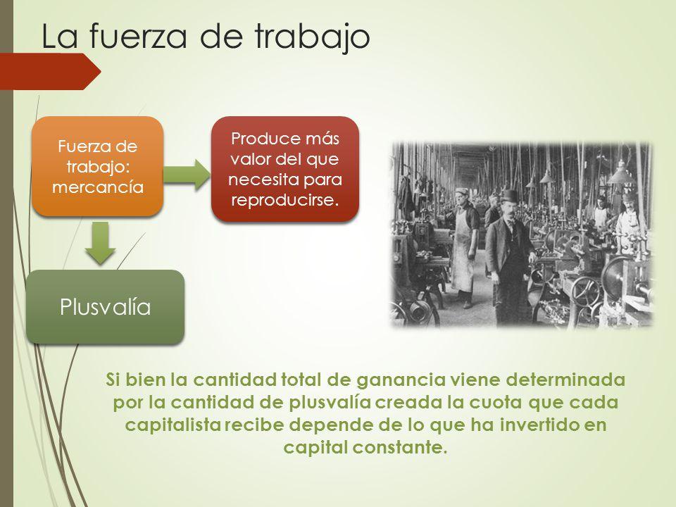 La fuerza de trabajo Si bien la cantidad total de ganancia viene determinada por la cantidad de plusvalía creada la cuota que cada capitalista recibe depende de lo que ha invertido en capital constante.