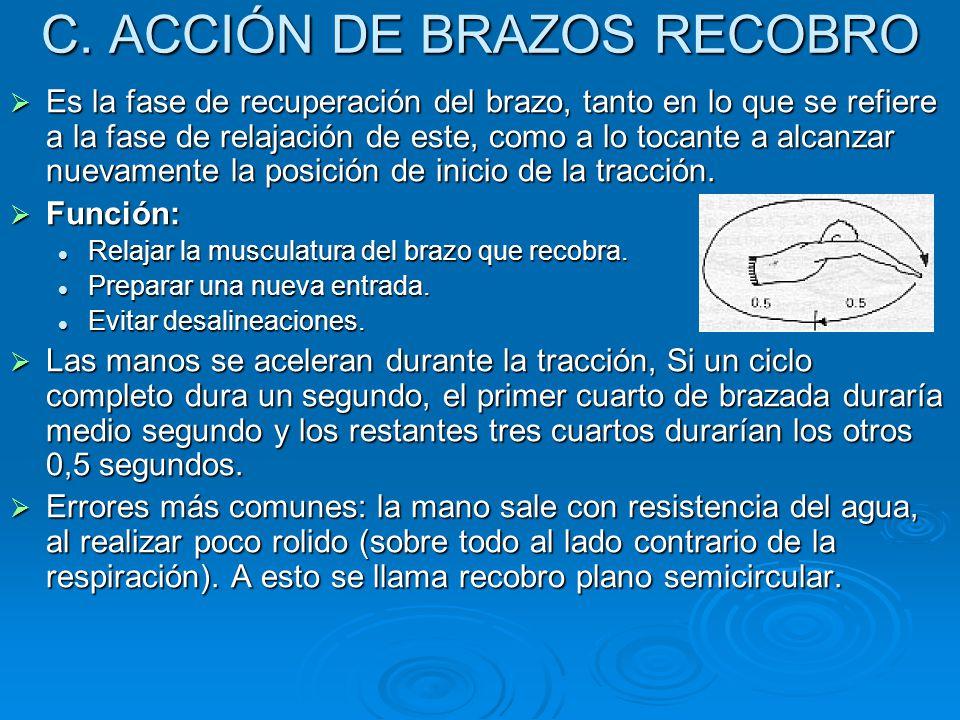 C. ACCIÓN DE BRAZOS RECOBRO  Es la fase de recuperación del brazo, tanto en lo que se refiere a la fase de relajación de este, como a lo tocante a al