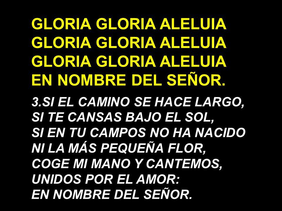 GLORIA GLORIA ALELUIA EN NOMBRE DEL SEÑOR.