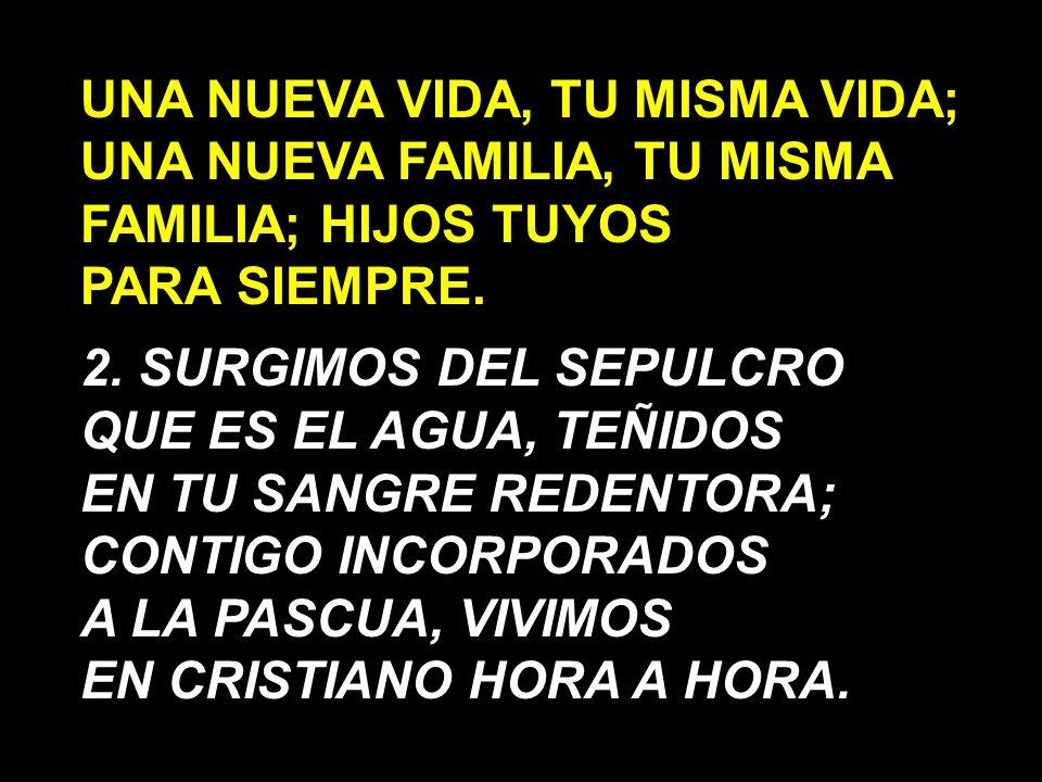 UNA NUEVA VIDA, TU MISMA VIDA; UNA NUEVA FAMILIA, TU MISMA FAMILIA; HIJOS TUYOS PARA SIEMPRE.