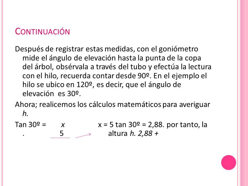 C ONTINUACIÓN Después de registrar estas medidas, con el goniómetro mide el ángulo de elevación hasta la punta de la copa del árbol, obsérvala a través del tubo y efectúa la lectura con el hilo, recuerda contar desde 90º.