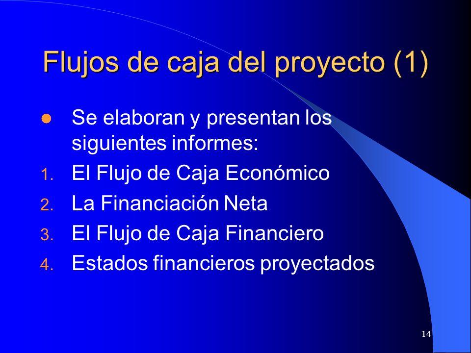 14 Flujos de caja del proyecto (1) Se elaboran y presentan los siguientes informes: 1.