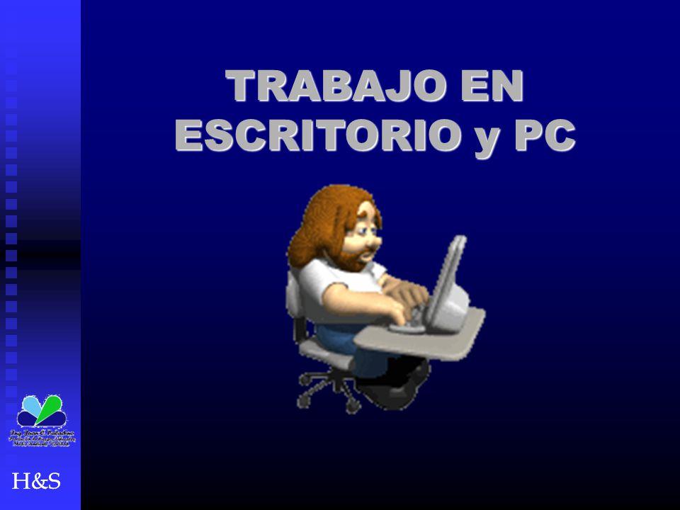 H&S TRABAJO EN ESCRITORIO y PC H&S