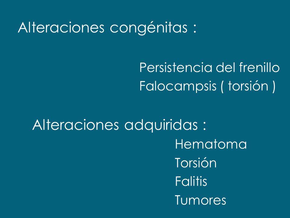 Alteraciones congénitas : Persistencia del frenillo Falocampsis ( torsión ) Alteraciones adquiridas : Hematoma Torsión Falitis Tumores