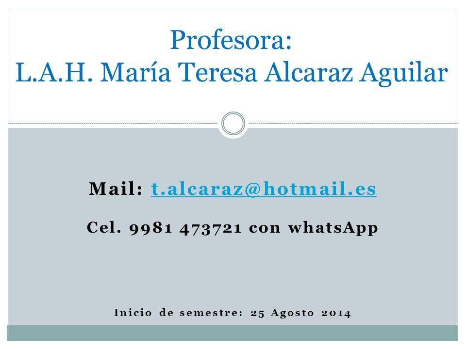 Mail: t.alcaraz@hotmail.est.alcaraz@hotmail.es Cel.