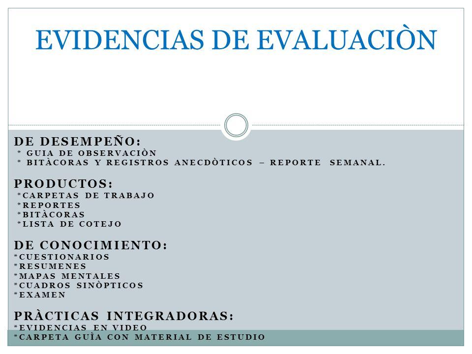DE DESEMPEÑO: * GUIA DE OBSERVACIÒN * BITÀCORAS Y REGISTROS ANECDÒTICOS – REPORTE SEMANAL.