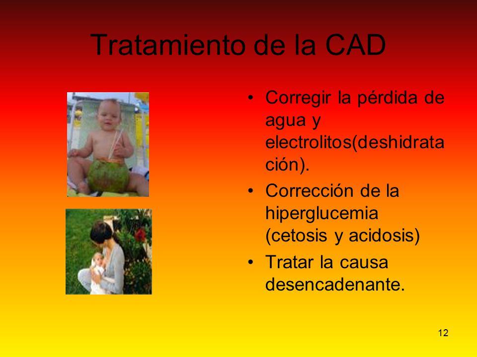 12 Tratamiento de la CAD Corregir la pérdida de agua y electrolitos(deshidrata ción). Corrección de la hiperglucemia (cetosis y acidosis) Tratar la ca