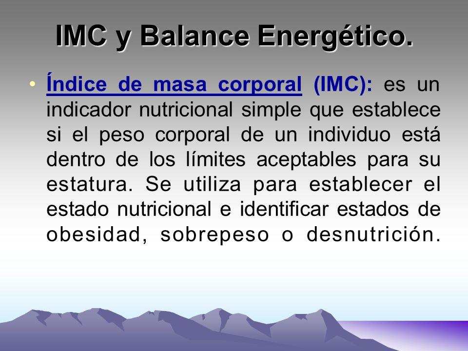 IMC y Balance Energético. Índice de masa corporal (IMC): es un indicador nutricional simple que establece si el peso corporal de un individuo está den