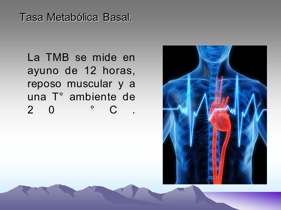 Tasa Metabólica Basal. La TMB se mide en ayuno de 12 horas, reposo muscular y a una T° ambiente de 20 °C.