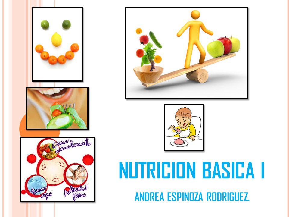 NUTRICION BASICA I ANDREA ESPINOZA RODRIGUEZ.