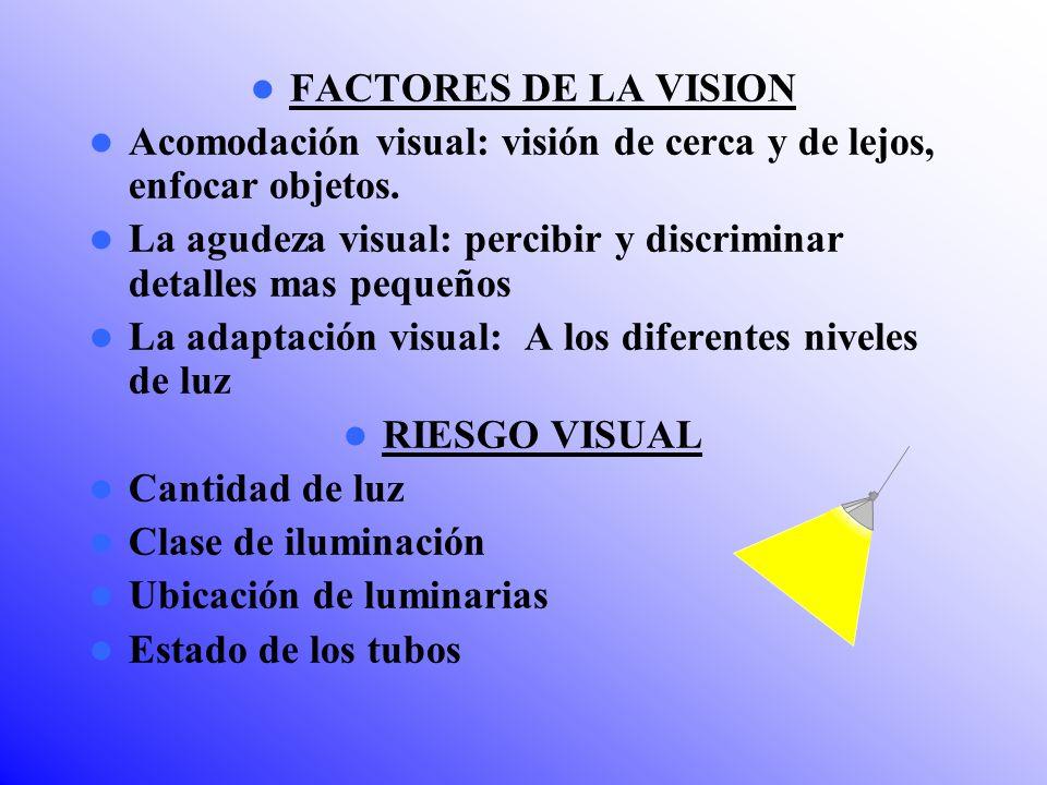 FACTORES DE LA VISION Acomodación visual: visión de cerca y de lejos, enfocar objetos.