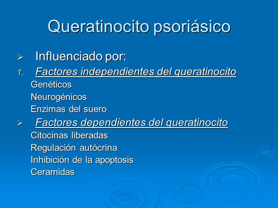 Queratinocito psoriásico  Influenciado por: 1. Factores independientes del queratinocito GenéticosNeurogénicos Enzimas del suero  Factores dependien