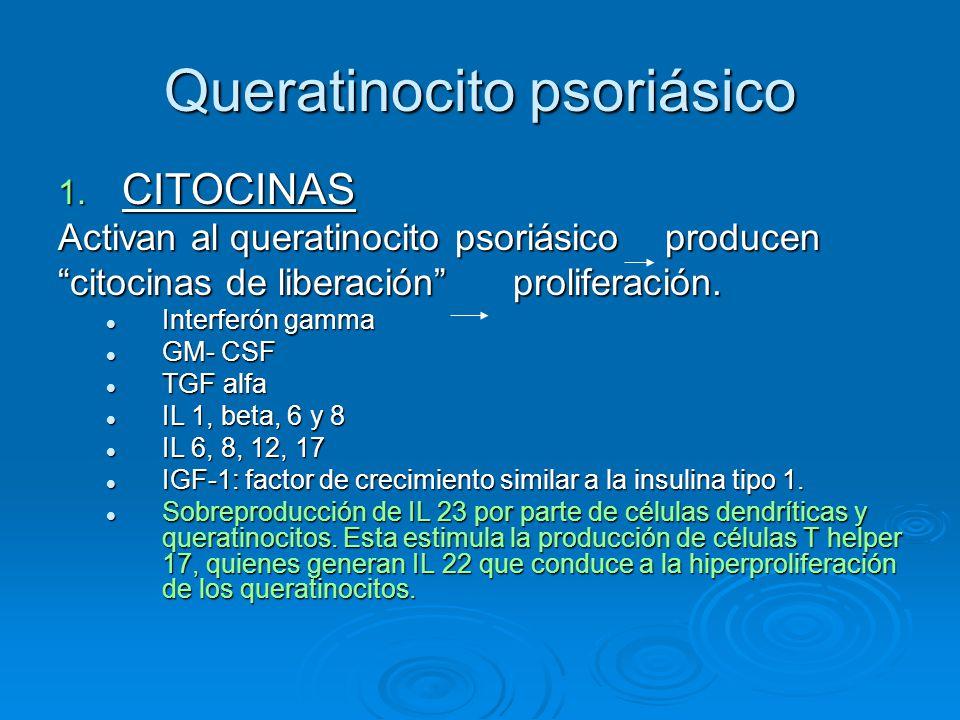 """Queratinocito psoriásico 1. CITOCINAS Activan al queratinocito psoriásico producen """"citocinas de liberación"""" proliferación. Interferón gamma Interferó"""