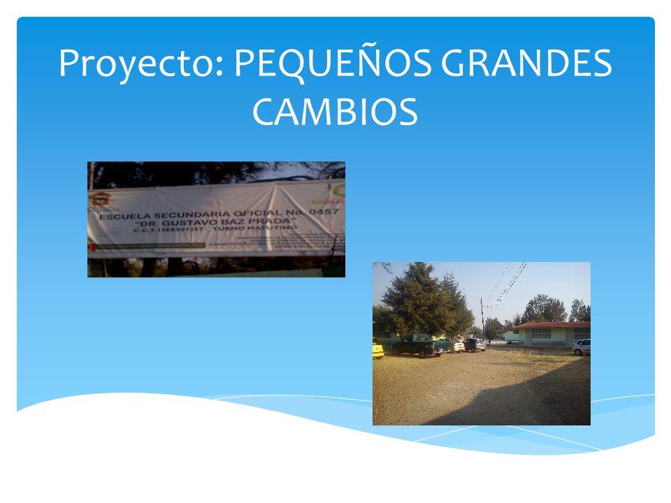 Proyecto: PEQUEÑOS GRANDES CAMBIOS