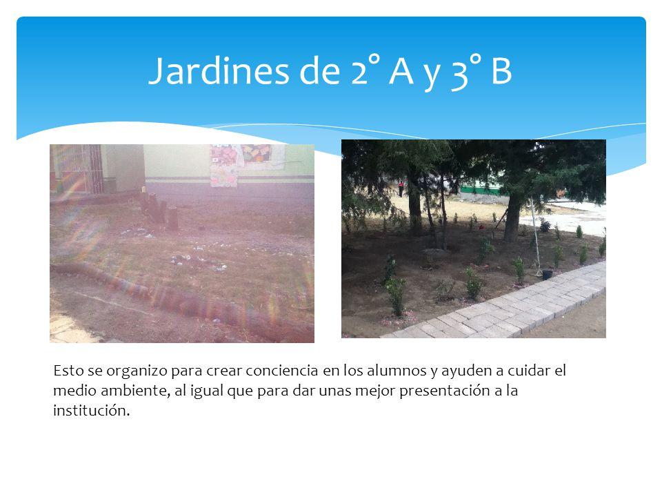 Jardines de 2° A y 3° B Esto se organizo para crear conciencia en los alumnos y ayuden a cuidar el medio ambiente, al igual que para dar unas mejor presentación a la institución.