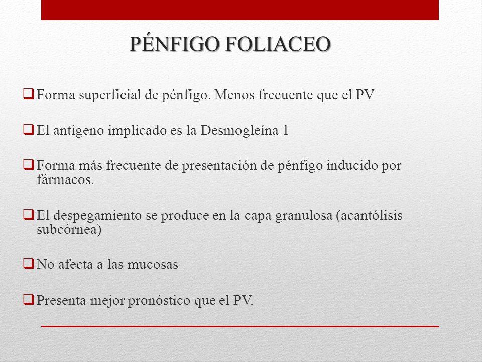 PÉNFIGO FOLIACEO  Forma superficial de pénfigo.