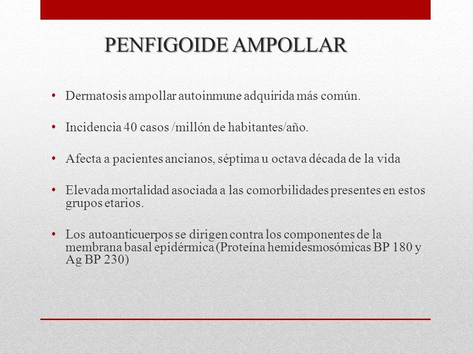 PENFIGOIDE AMPOLLAR Dermatosis ampollar autoinmune adquirida más común.