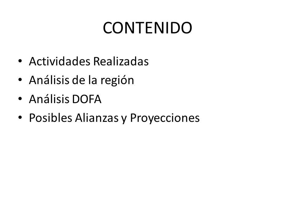 CONTENIDO Actividades Realizadas Análisis de la región Análisis DOFA Posibles Alianzas y Proyecciones